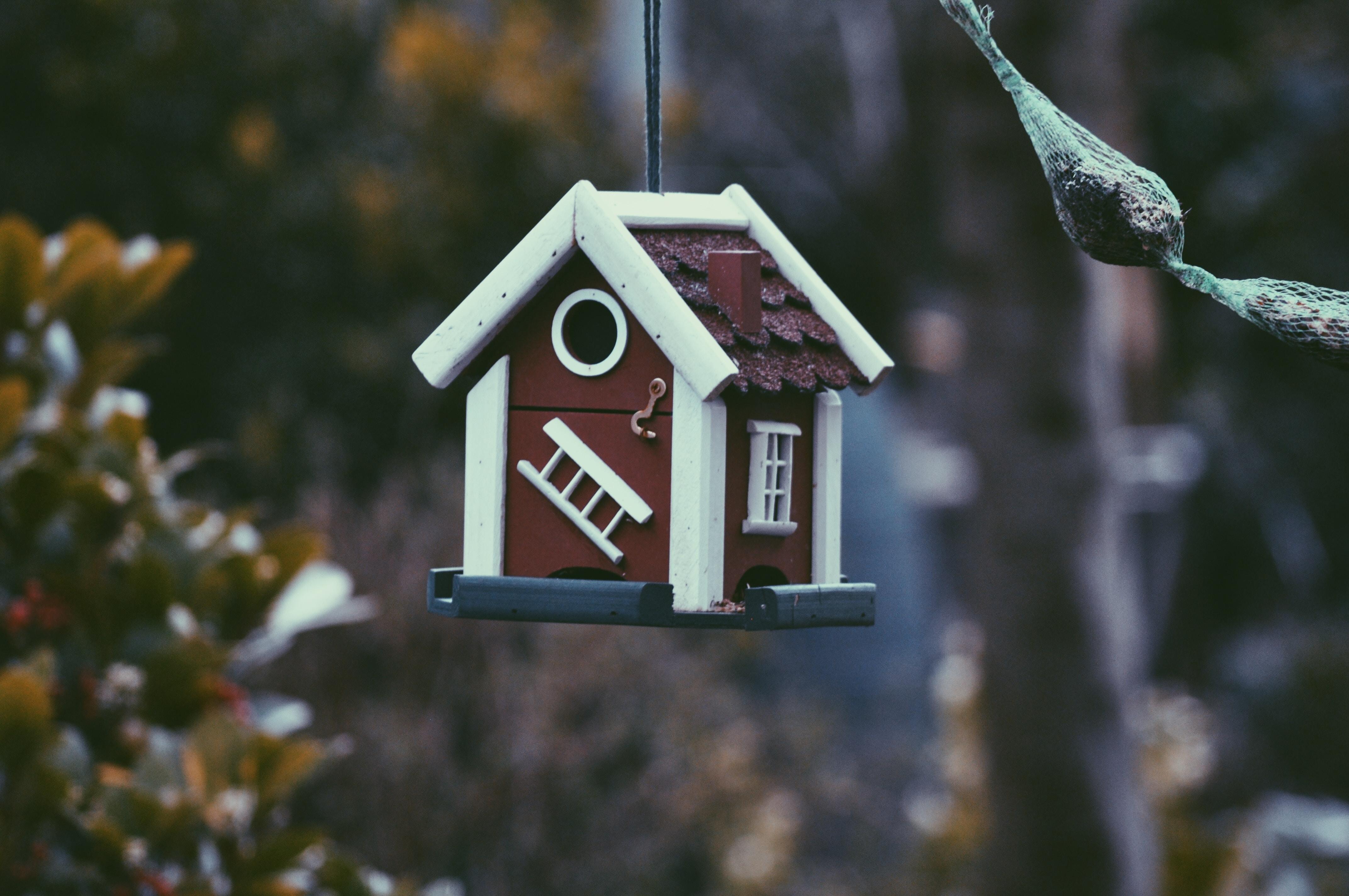 Comment faire la comptabilité d'une SCI (Société Civile Immobilière) ?